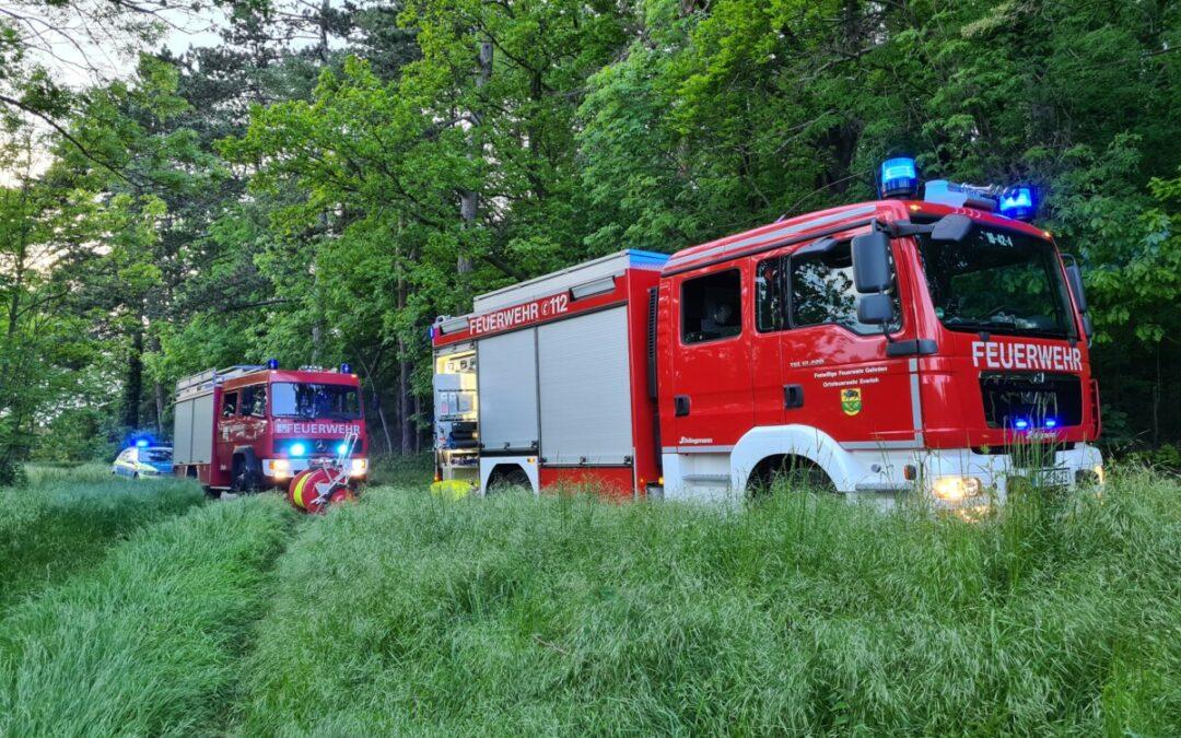 Feuer – Lagerfeuer im Wald